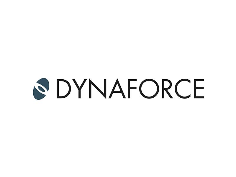 Dynaforce 800x600